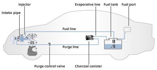 Evap System Leak   Top New Car Release Date