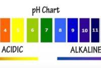 Alkalinity VS PH