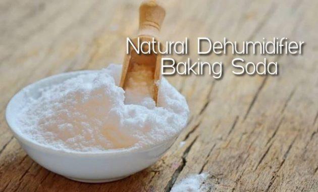 Natural Dehumidifier Baking Soda